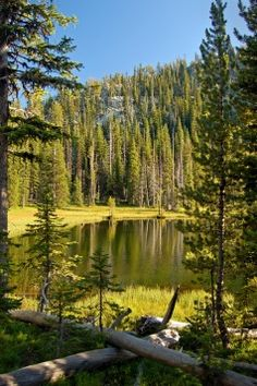Anthony Lakes - I'm thinking this is where I used to go on family camping trips growing up... <3