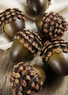 Natural Acorns With Natural Pine Cone Tops