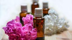 L'aromathérapie : La trousse AROMA FAMILIALE