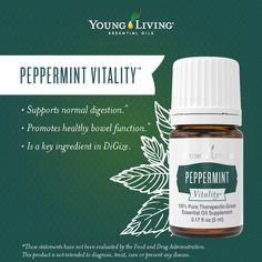 Young Living Essential Oils:  Peppermint Vitality | If #PeppermintVitality isn't a must-have essential oil, we don't know what is.  WWW.THESAVVYOILER.COM