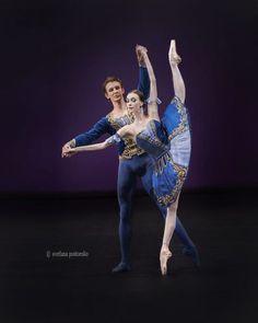 2017 Benois de la Danse Laureates Gala – Ballet: The Best Photographs Bolshoi Theatre, Bolshoi Ballet, Ballet Dancers, Burlesque, Marilyn Monroe Artwork, Nureyev, Pretty Ballerinas, Dance Tights, Russian Ballet