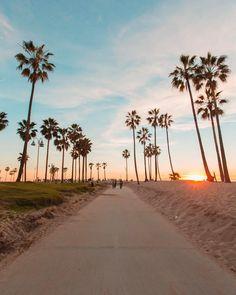 Los Angeles California by Debodoes California Feelings California Dreamin', Los Angeles California, California Palm Trees, Sunset Beach California, California Pictures, Palm Trees Beach, California Camping, Wallpaper California, Beach Aesthetic