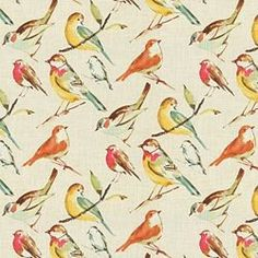 Birdwatcher / Meadow traditional upholstery for my casual dining chairs bought at Joann fabrics