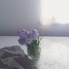 via nonihana_ on instagram by Yukiko Masuda