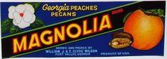 http://fruitcratelabelart.blogspot.fi/2012/05/vintage-peach-crate-labels.html