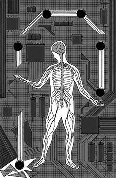 Why Robots Will Always Need Us By NICHOLAS CARRMAY 5/20/15 - NYTimes.com