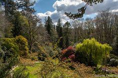 Powerscourt Gardens, via Flickr.