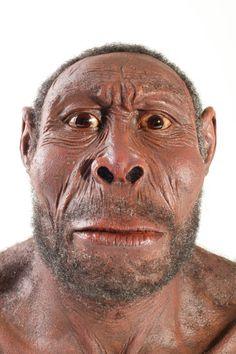 """El Homo Sapiens es una especie de primate perteneciente a la familia de los homínidos. También son conocidos como """"hombres"""". Poseen características anatómicas de las poblaciones humanas actuales. Los restos más antiguos son de hace 195000 años."""