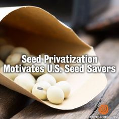 The US Food Sovereignty Alliance unveils A Preliminary Report on Seeds and Seeds Practices across the US in time for World Food Day and the presentation of the 2014 Food Sovereignty Prizes. More here: http://www.cornucopia.org/2014/09/seed-privatization-motivates-u-s-seed-savers #food #seeds #saveourseeds #seedsavers #foodsecurity