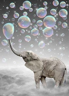 The Simple Things Are The Most Extraordinary (elephant-size Dreams) Artwork Print by Soaring Anchor Designs - SMALL Image Elephant, Elephant Size, Framed Art Prints, Canvas Prints, Canvas Art, Wall Prints, Blowing Bubbles, Bubbles 3, Rainbow Bubbles