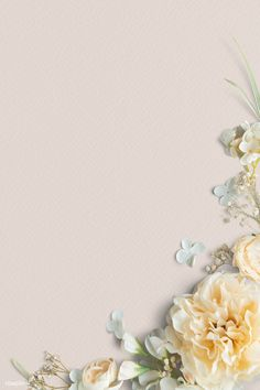 Blank White Background, Flower Background Wallpaper, Flower Phone Wallpaper, Leaf Background, Orange Background, Flower Backgrounds, Background Patterns, Yellow Peonies, Pink Tulips