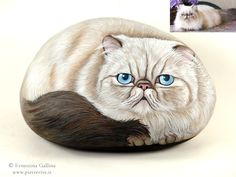 Hand painted rock.Cat Portraits on stone.