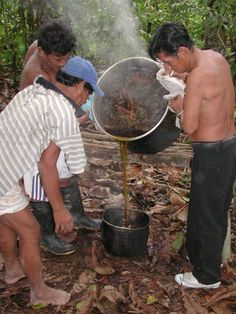 Pouring off the ayahuasca. Don Roberto Acho, my maestro ayahuasquero, is on the right, smoking mapacho.