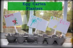 Recycle an egg carton into a planter to start growing seeds.  Kids love this!