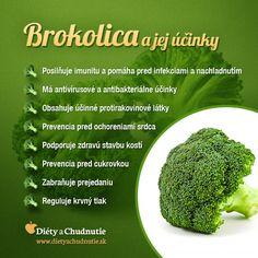 Infografika - brokolica a jej účinky. Počuli ste už o diéte, počas ktorej sa konzumuje brokolicová polievka? Pri jej konzumácii dodáte telu množstvo vitamínov a minerálov a môžete si ňou detoxikovať organizmus, viac informácii nájdete tu http://www.dietyachudnutie.sk/diety/redukcne-diety/brokolicova-polievka-dieta/