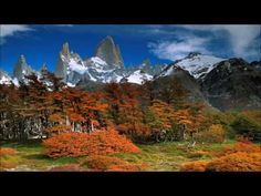 The traditional music of Argentina includes a variety genres. Folk music (called música folklórica or folklore in Spanish) comes in many forms, developed in . Marry Me Lyrics, Sebastian Bach, Folk Music, Pilgrimage, Music Publishing, Music Artists, South America, Music Videos, Around The Worlds