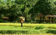 Mai chau, Phu yen, Vu Linh motobike tour 4 days 3 nights - Viet Nam Typical Tours