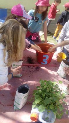 No dia 30 de março a tarde das alunas e dos alunos do 1.º e 2.º ciclos foi passada na nossa horta biológica.  #colegiodealfragide #amadora #portugal #feriaspascoa