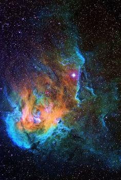 Running Chicken Nebula
