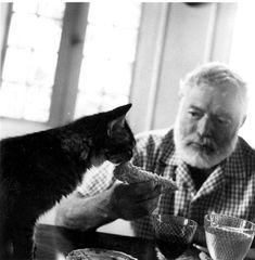 Hemingway and cat (Image: JFK Library)