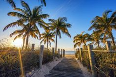 Among Key West hotels, the Hilton Garden Inn stands out with its modern tropical feel and a vibrant location near Duval Street, at the entrance to the Keys. Key West Beaches, Malibu Pier, Natures Path, Thing 1, Travel Deals, Usa Travel, Travel Guide, Caribbean Cruise, Stay The Night