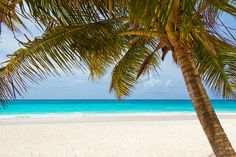 Beach, Beautiful, Blue, Coast, Landscape