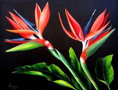 Birds of Paradise - Dominica Alcantara