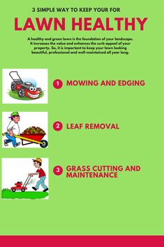 3 simple way to care you lawn lawncare