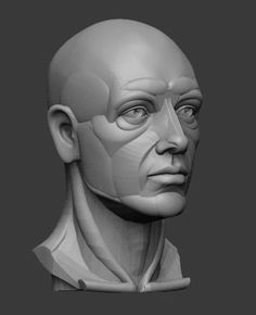 planar simplified male head  3d model obj stl ztl 2
