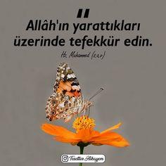 Allah, Instagram, Design