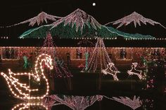 If you live in Abbotsford, B.C., drive to Stanwood, Wash. It's less than two hours on the road to Warm Beach Camp and Conference Center in Stanwood, Wash., and the community's annual Lights of Christmas celebration. Visitors (estimated at 72,000) come to sample eats from an assortment of vendors, watch shows, peek at the more than one million lights and ride the Polar Express.