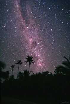 Starry Sky of Cook Islands...so bright you can stand on the beach and watch the fish swimming at night.