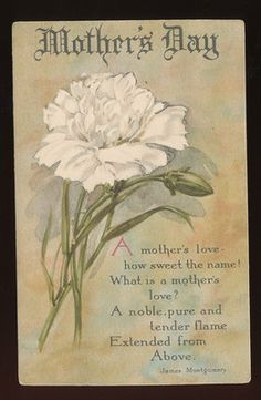 "Vintage "" MOTHER'S DAY ""Greeting Postcard with Poem & Carnation Flower-ccc566"