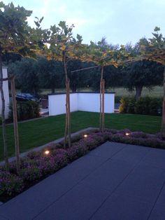 Garten bei Nacht