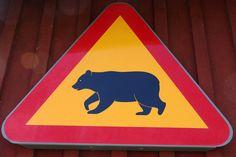 Warnschild im Bärenpark in Schweden