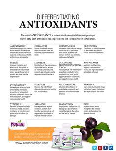 Differentiating Antioxidants. Astaxanthin. Chromium. Coenzyme Q 10, Flavonoids. Lutein. Lycopene. Oligomeric. Proanthocyanidins(POCs). POlyphenols. Pychogenol. Selenium. Sulforaphane. Vitamin A. Vitamin C. Vitamin E. Zeaxanthin. Zinc. Acai Fab best supplement from Zenith Nutrition. Health Supplements. Nutritional Supplements. Health Infographics.