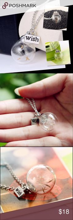 Lucky Real Dandelion Wishing Necklace Real dandelion seeds in a glass wishing bottle. Silver plated. Please check out other items in my closet. Price Firm Unless Bundled New! Jewelry Necklaces