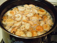 Соленые волнушки рецепт с фото