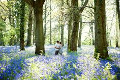 I LOVE bluebells! Cute engagement shoot