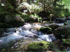 Naturschutzgebiet Rungstocktal
