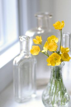 tiny yellow flowers and tiny jars
