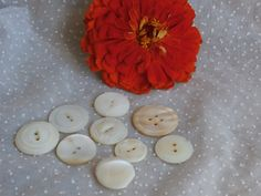 9 Large Shell Buttons Carved Assorted Designs Vintage Sewing or Craft Supply