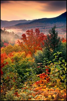 Kancamagus Highway in autumn, White Mountains, New Hampshire; photo by Gary Crabbe