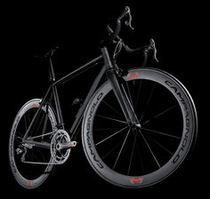 The front view of the crisptitanium fully equipped with the Campagnolo 80 Anniversary Collection