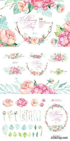 Bloomy Day. Floral Collection - Creativemarket 277112 Copic Marker Art, Eye Photography, Rose Design, Diy Projects To Try, Creative Inspiration, Planner Stickers, Flower Power, Art Reference, Clip Art