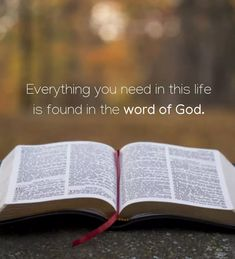 """""""Everything you need in this life is found in the word of God. Christian Images, Christian Quotes, Christian Faith, Jesus Bible, Bible Verses, Bible Art, Spiritual Awakening, Spiritual Quotes, Bible Images"""