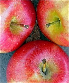 Apples. One of the greatest fruits out there. High in fiber, vitamins and low in sugar. An apple a day...