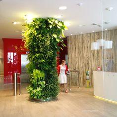 Un mur végétal dans un hall d'accueil. Une colonne végétalisée. #greenwall #murvegetal #verticalgarden #colonnevegetalise