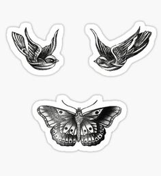 Harry Styles stickers featuring millions of original designs created by independent artists. Tatuajes Harry Styles, Harry Styles Dibujo, Harry Styles Drawing, Band Stickers, Laptop Stickers, Cute Stickers, Harry Tattoos, Harry Styles Tattoos, Borboleta Harry Styles