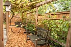 Like the wire fence separate from the privacy fence. Prolongs the wood privacy to have vines on the wire.  Photobook: patios, water features, walls, gates and more! - traditional - landscape - portland - Landscape East & West